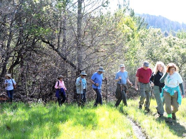 Mt. Sugarloaf Hike
